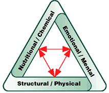 triad of health